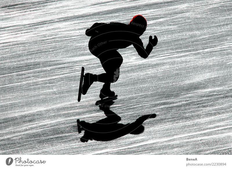 Silhouette eines Eisschnellläufers im Gegenlicht Winter Sport Fitness Sport-Training Wintersport Sportler Sportveranstaltung Eisschnelllauf Schlittschuhlaufen