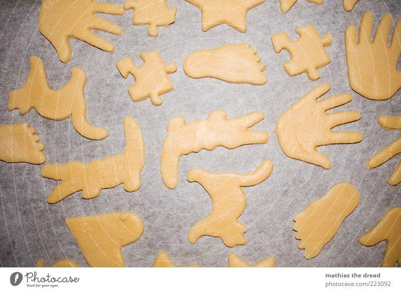KEKSE Lebensmittel Teigwaren Backwaren Plätzchen Strukturen & Formen Hand Puzzle Fuß Katze Krokodil Vorbereitung Weihnachtsgebäck vorweihnachtszeit Farbfoto