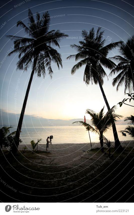 Baum Meer Strand Ferien & Urlaub & Reisen Landschaft Kunst Palme Thailand filmen friedlich Reinheit Sonnenuntergang Sonnenaufgang Kokospalme