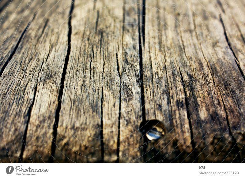 altes Holz mit Schraube Stahl dreckig natürlich trocken braun authentisch Planke Holzbrett fest Verbundenheit fixieren verwittert Riss Farbfoto Außenaufnahme
