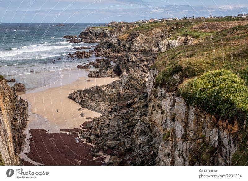 Strandlandschaft Sommer Sommerurlaub Meer Wellen wandern Landschaft Wasser Horizont Schönes Wetter Gras Sträucher Meeresalgen Algen Ginster Felsen Bucht Klippe