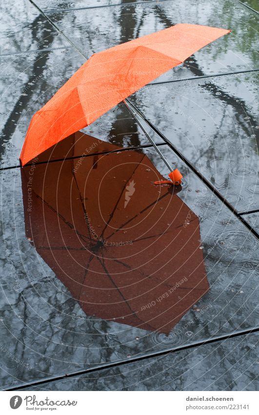 der Wetterbericht für heute Regen orange nass liegen offen Klima Boden Regenschirm feucht Schirm schlechtes Wetter Klimawandel Licht Reflexion & Spiegelung