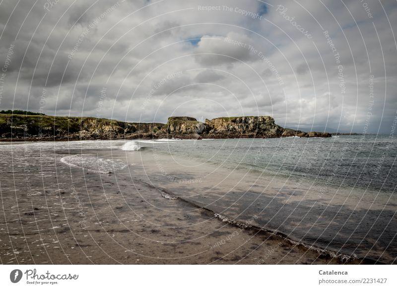 Brandung Schwimmen & Baden Natur Sand Wasser Himmel Wolken Sommer schlechtes Wetter Algen Meeresalgen Felsen Wellen Küste Strand Bucht Biskaya Bewegung