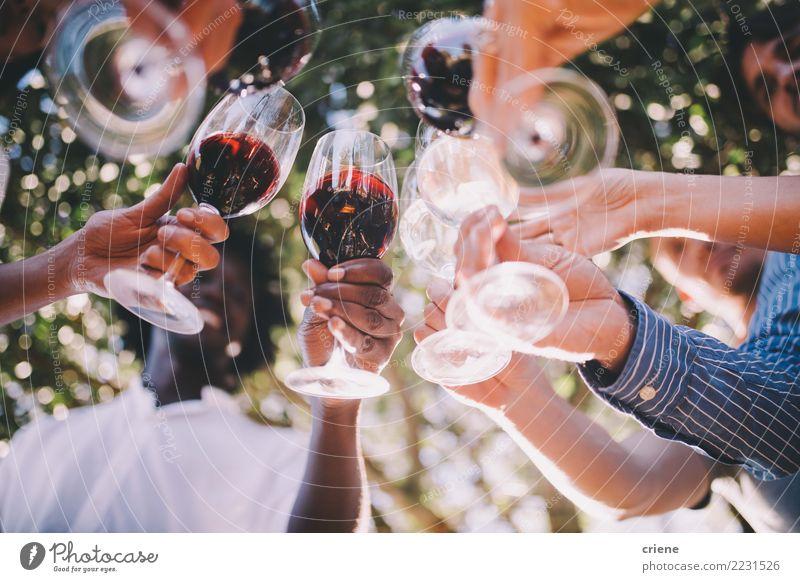 Gruppe Freunde, die mit Weingläsern an der Party rösten trinken Alkohol Freude Sommer Veranstaltung Restaurant Bar Cocktailbar ausgehen Feste & Feiern Hochzeit