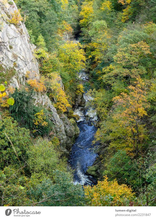 Bodetal im Harz Ferien & Urlaub & Reisen Tourismus Berge u. Gebirge Natur Landschaft Wasser Herbst Felsen Schlucht Fluss hoch Erholung Umwelt Rosstrappe
