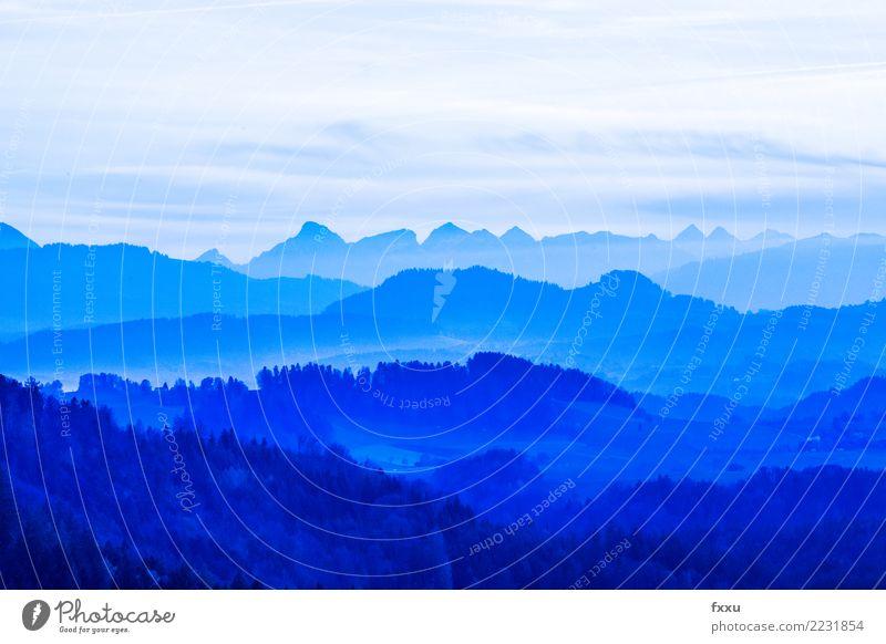 Aussicht Berglandschaft Berge u. Gebirge blau Panorama (Aussicht) Landschaft Himmel Alpen Bergkette Berner Oberland Kanton Bern Schweiz Ferne Natur wandern