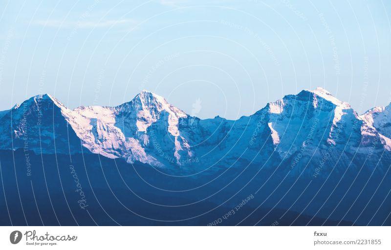 Eiger Mönch und Jungfrau Mönch (Berg) Jungfrau (Berg) Schweiz Felsen Alpen Berge u. Gebirge Grindelwald Natur Schnee Aussicht Berner Oberland nordwand Gletscher