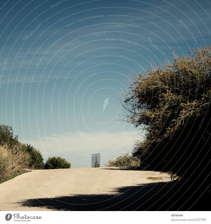 Natur Landschaft Sommer Feld blau braun Sand Sandweg Farbfoto Gedeckte Farben Außenaufnahme Menschenleer Morgen Licht Schatten Zentralperspektive Vorderansicht