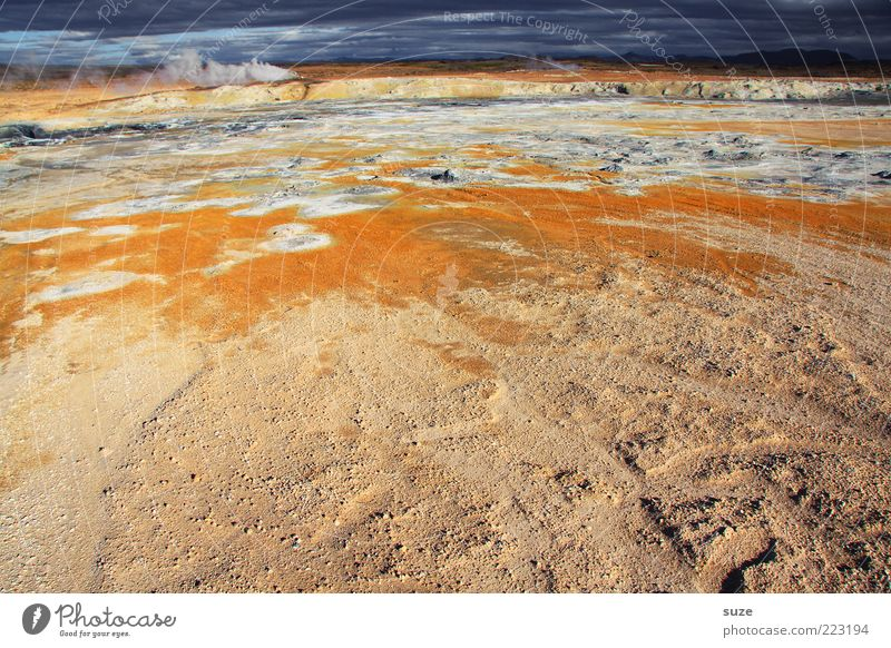 Warm up Natur Landschaft Umwelt Stein orange Klima heiß außergewöhnlich Island Wasserdampf Quelle Geothermik Wasser Vulkan Berge u. Gebirge Schwefel