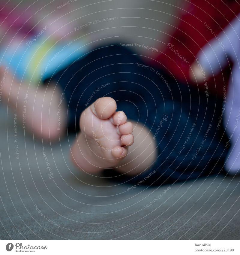 5 kleine Knubbelzehen Kind Baby Kindheit Fuß 0-12 Monate blau grau Zehen Fußsohle Barfuß Unbeschwertheit Fröhlichkeit Farbfoto mehrfarbig Innenaufnahme