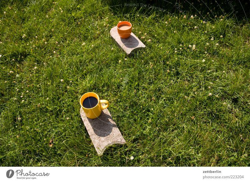 Ein Kaffee schwarz, ein Kaffee mit Milch Pflanze Sommer Erholung Wiese Gras Garten Stein Park frei Kaffee Pause trinken Freundlichkeit Tasse lecker Picknick
