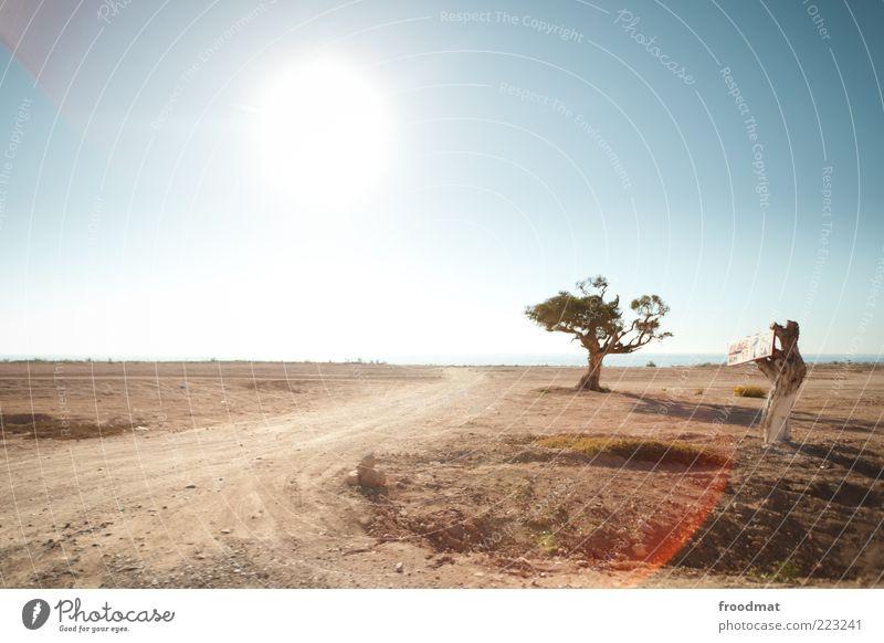 hot spot Natur Baum Sonne Sommer Meer Ferien & Urlaub & Reisen Ferne Einsamkeit Freiheit Wege & Pfade Umwelt Sand Küste Wärme Erde Ausflug