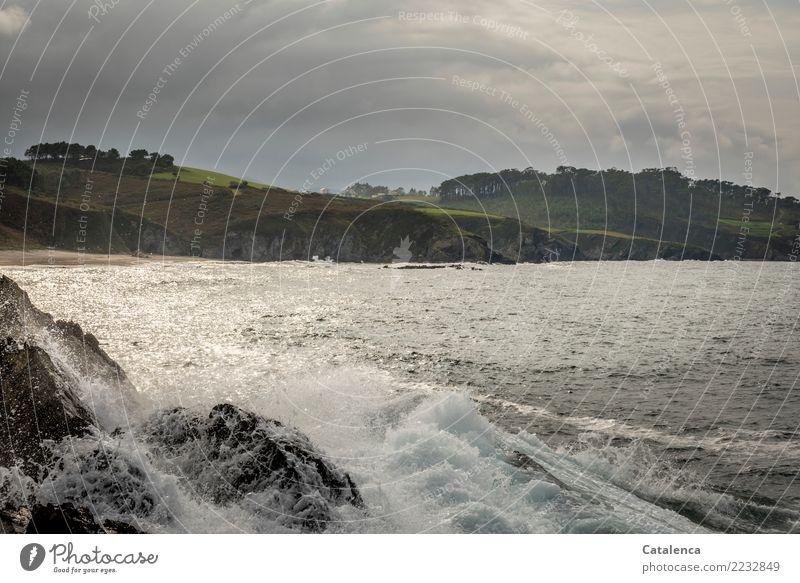 Gischt Ausflug Sommer Sommerurlaub Strand Wellen Natur Wasser Wassertropfen Wolken schlechtes Wetter Baum Gras Kiefer Küste Bucht Dorf glänzend