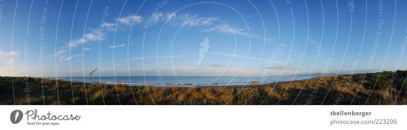 seaside Natur Sand Wasser Himmel Wolken Sommer Herbst Schönes Wetter Gras Wellen Küste Strand Mittelmeer Toskana Italien blau Aussicht Stranddüne Dünengras Meer
