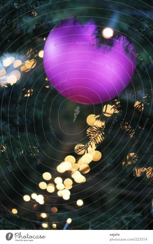 weihnachtskugel im lichtermeer Weihnachten & Advent Weihnachtsbaum violett leuchten hängen Christbaumkugel matt Lichterkette Weihnachtsdekoration