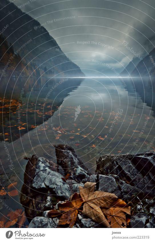 Bis zum Morgengrauen Natur Wolken ruhig Blatt dunkel kalt Herbst Berge u. Gebirge Landschaft Stimmung See braun Wetter Nebel Wandel & Veränderung