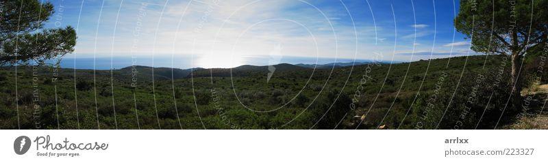 Mediterraner Panoramablick auf das Meer Ferien & Urlaub & Reisen Freiheit Sonne Umwelt Natur Landschaft Pflanze Erde Wasser Himmel Horizont Sonnenlicht