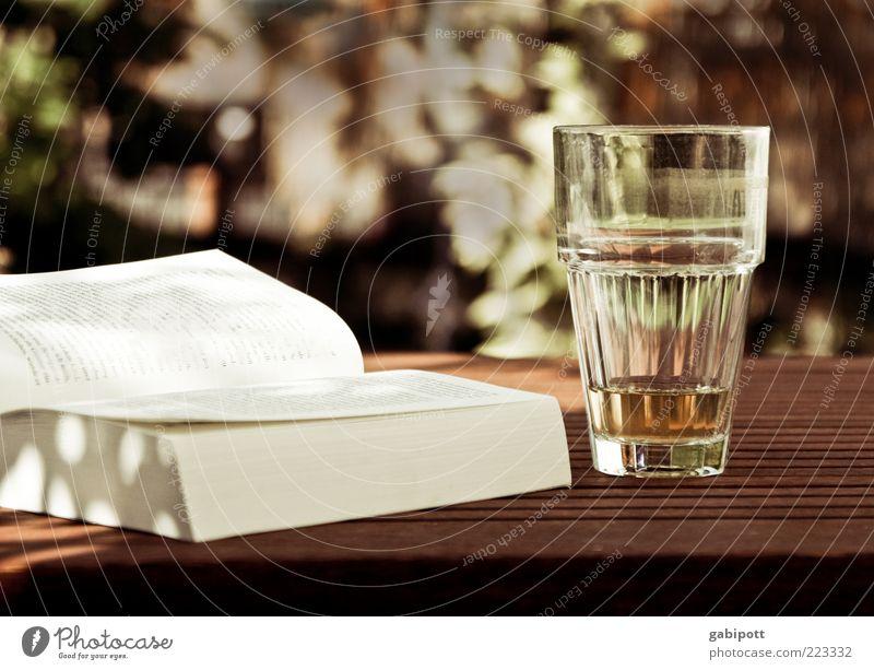 Sonnige Tage Lebensfreude Zufriedenheit Erholung Freizeit & Hobby genießen Glas Buch Tisch Gartentisch sommerlich mehrfarbig Außenaufnahme Menschenleer Licht
