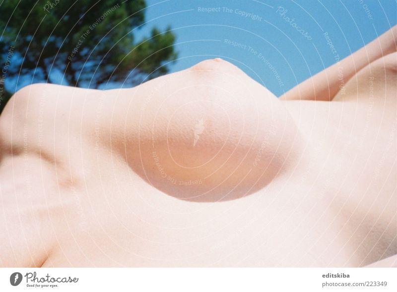 Nackt Junge Frau Jugendliche Erwachsene Körper Brust Kunst genießen heiß schön dünn nackt Natur Akt Farbfoto mehrfarbig Außenaufnahme Detailaufnahme