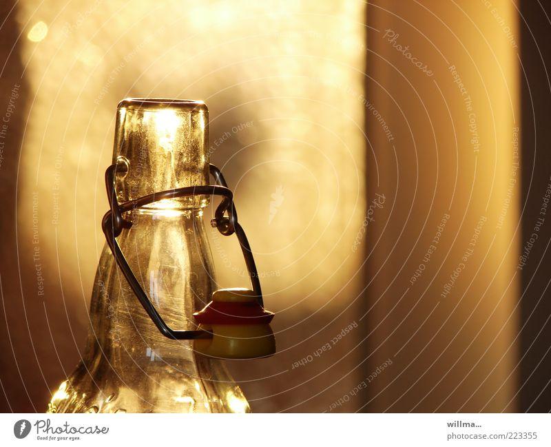 mann, war ich gestern voll... gelb gold Glas Getränk leer offen Bier Flasche Alkohol Durst Lichtspiel Bierflasche Sucht Flaschenhals Limonade Ernährung