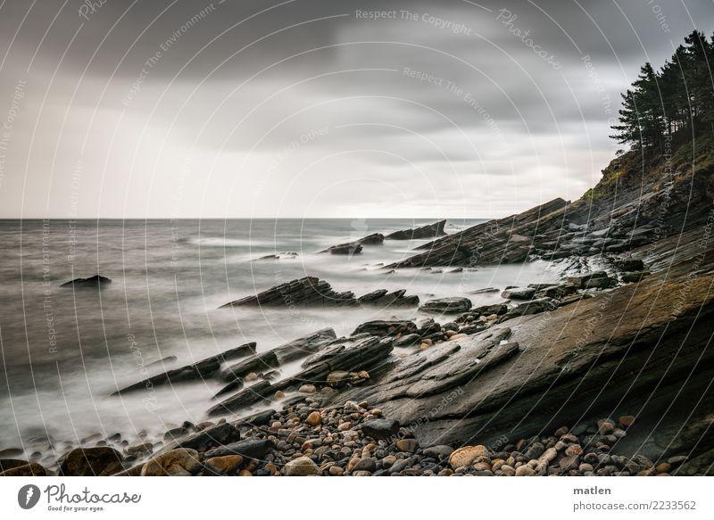 Bizkaya Natur Landschaft Pflanze Sand Luft Wasser Himmel Wolken Horizont Sommer Wetter schlechtes Wetter Baum Felsen Wellen Küste Strand Bucht Meer dunkel braun