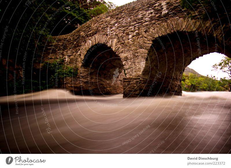 Irish bridge alt Wasser Sommer Landschaft Stein braun Brücke historisch Flussufer Dynamik fließen Republik Irland Strömung Mittelalter Schatten Europa