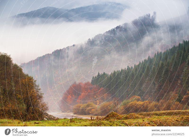 Herbstregen und -nebel in den Bergen. Nebel über dem Fluss Natur Ferien & Urlaub & Reisen Pflanze grün Landschaft Baum rot Wolken Ferne Wald Berge u. Gebirge