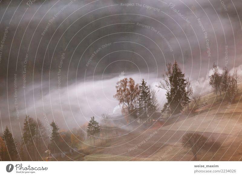 Bergdorf in den Wolken des Nebels und des Rauches. Herbstmorgen. schön Ferien & Urlaub & Reisen Berge u. Gebirge wandern Haus Garten Natur Landschaft Erde Baum