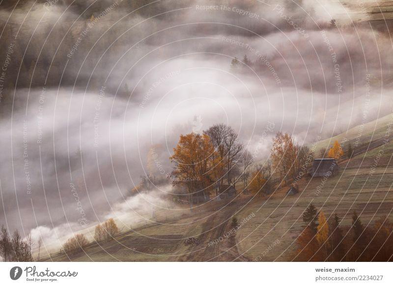 Bergdorf in den Wolken des Nebels und des Rauches. Herbstmorgen Natur Ferien & Urlaub & Reisen grün Landschaft Baum Haus Ferne Wald Berge u. Gebirge gelb Wiese