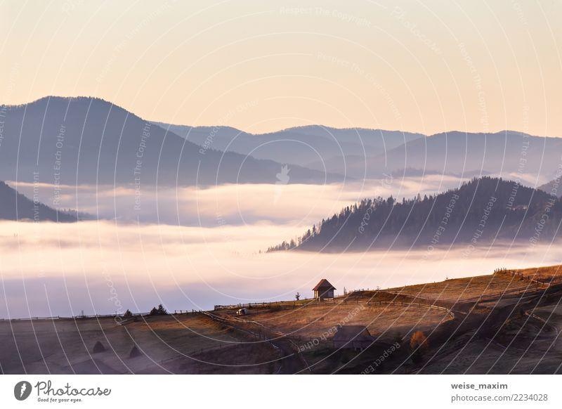 Kleine Hütte auf Gebirgspass am nebeligen Morgen des Herbstes Himmel Natur Ferien & Urlaub & Reisen Sommer Landschaft Baum Haus Ferne Wald Berge u. Gebirge gelb