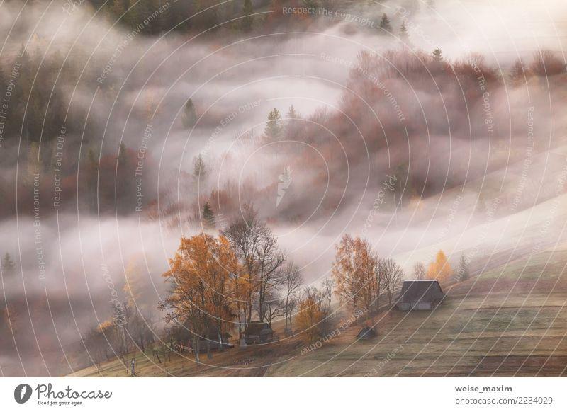 Bergdorf. Wolken aus Nebel und Rauch. Herbstmorgen Natur Ferien & Urlaub & Reisen schön grün Landschaft Baum Haus Wald Berge u. Gebirge Straße gelb Wiese Gras