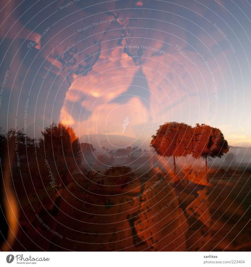 Wärme Landschaft Feuer Himmel Herbst Klima Klimawandel Baum Wiese ästhetisch außergewöhnlich heiß rot Geborgenheit Endzeitstimmung Natur Surrealismus träumen