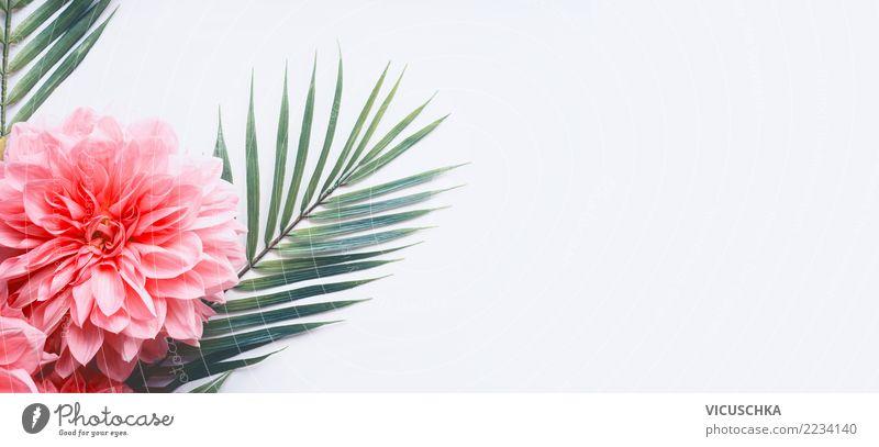 Tropische Palmenblätter mit rosa Blumen Stil Design Sommer Pflanze Blatt Blüte Dekoration & Verzierung Fahne grün weiß Hintergrundbild Entwurf tropisch