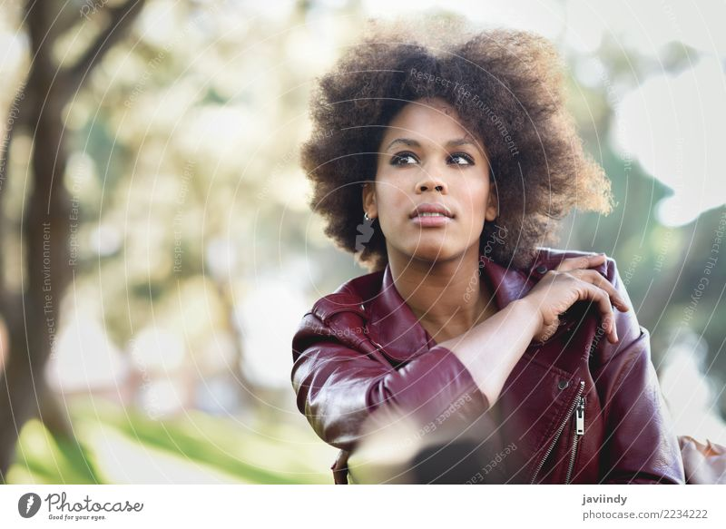 Schwarze Frau mit Afro-Frisur, die in einem Stadtpark sitzt. Lifestyle Stil Glück schön Haare & Frisuren Gesicht Mensch feminin Junge Frau Jugendliche