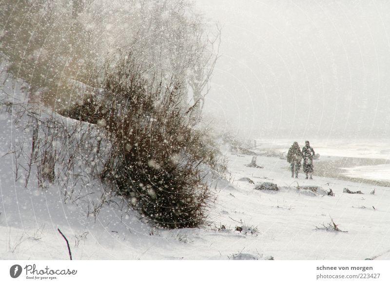 winterwunderweltenweitundbreit Mensch 2 Umwelt Natur Landschaft Wasser Wassertropfen Himmel Winter schlechtes Wetter Wind Eis Frost Schnee Schneefall Pflanze