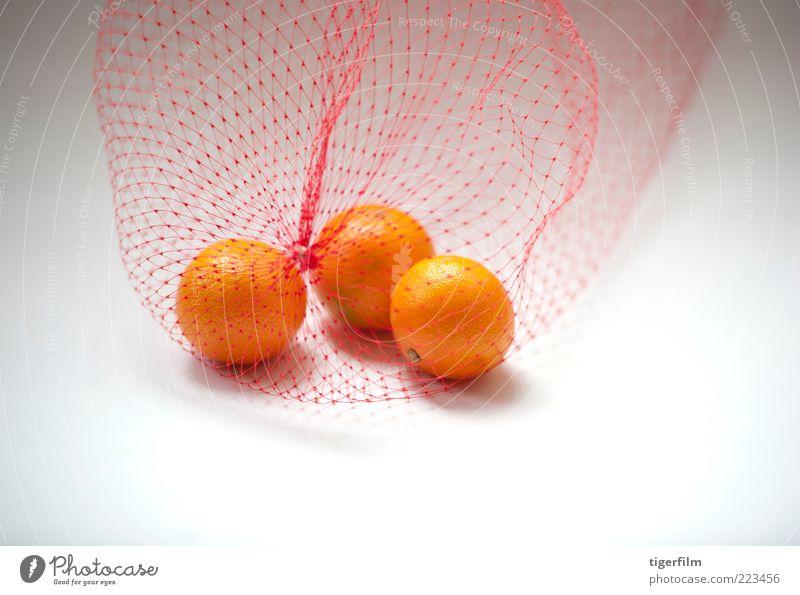 Mandarinenorangen weiß Frucht Tasche Plastiktüte Nylon Kunststoff Netzstrümpfe drei 3 Lebensmittel Snack Stillleben einfach