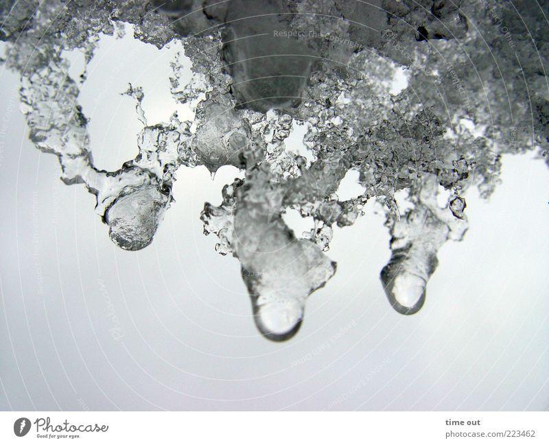 Schneeschmelze Wasser schön Winter kalt Umwelt Eis warten nass Wassertropfen Coolness Frost natürlich einzigartig Tropfen Flüssigkeit