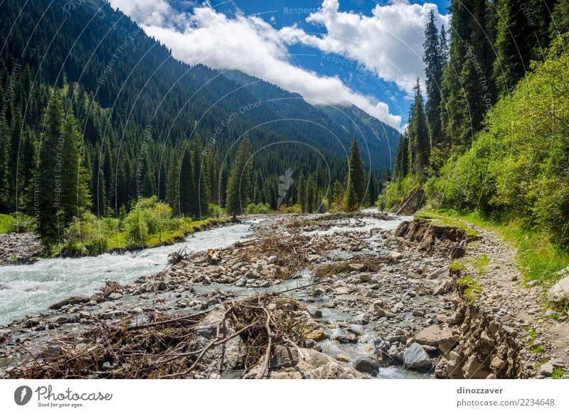 Fluss in Nationalpark Karakol, Kirgisistan Sommer Berge u. Gebirge Natur Landschaft Himmel Wolken Baum Gras Wald Hügel Felsen Schlucht Verkehr Straße grün Asien