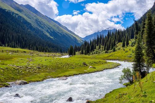 Schönes Tal von Altyn Arashan, Kirgisistan Natur Ferien & Urlaub & Reisen Sommer grün Landschaft Tier Wald Berge u. Gebirge Wiese Gras Tourismus wild wandern