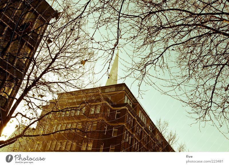 Hamburg Christmas Time Himmel alt Stadt Baum Pflanze Winter Haus Wand Fenster Mauer Architektur Gebäude hell Fassade Hochhaus Hamburg