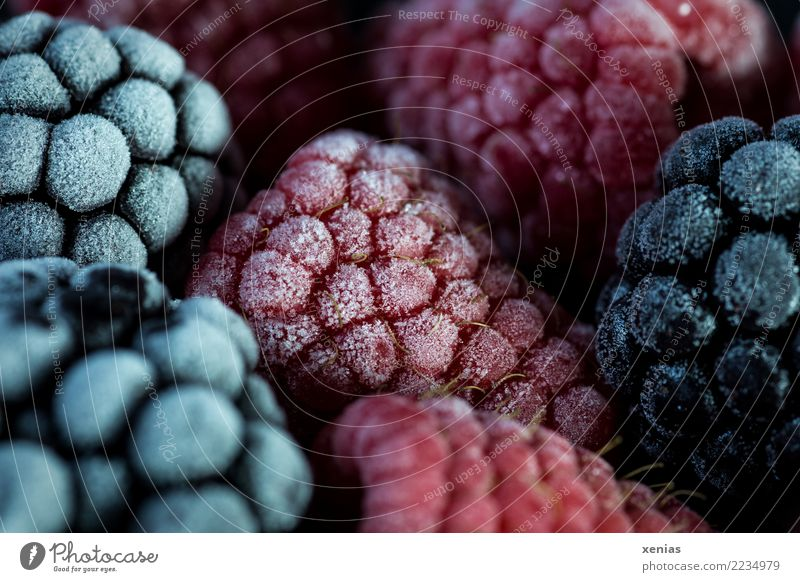 tiefgekühlt Lebensmittel Frucht Himbeeren Brombeeren Beeren Bioprodukte Vegetarische Ernährung frieren Gesundheit kalt lecker saftig rot schwarz gefroren