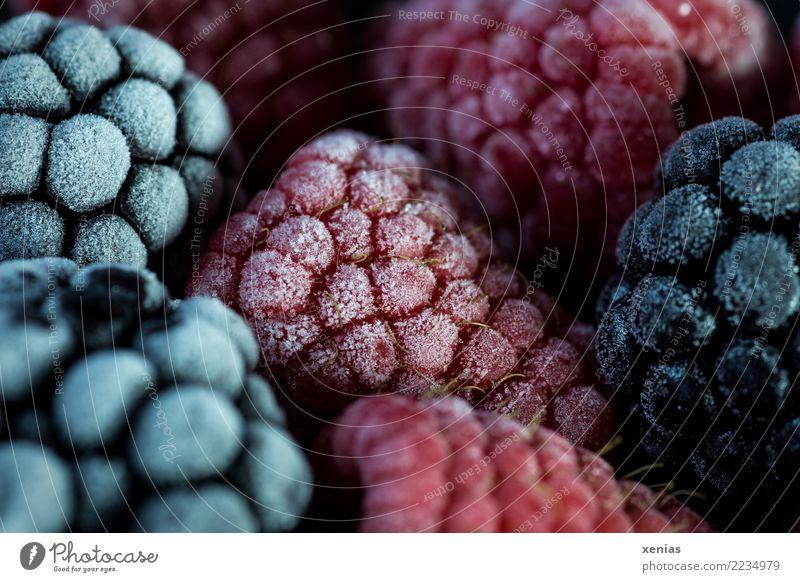 tiefgekühlt rot schwarz kalt Gesundheit Lebensmittel Frucht lecker gefroren Bioprodukte Beeren Vegetarische Ernährung frieren saftig Eiskristall Himbeeren