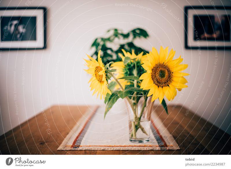 Stillleben Pflanze Blume Holz Design Häusliches Leben Esstisch Wohnzimmer Tischwäsche Tischdekoration Sonnenblume Blumenvase Blumenstrauß Wandmalereien Farbfoto
