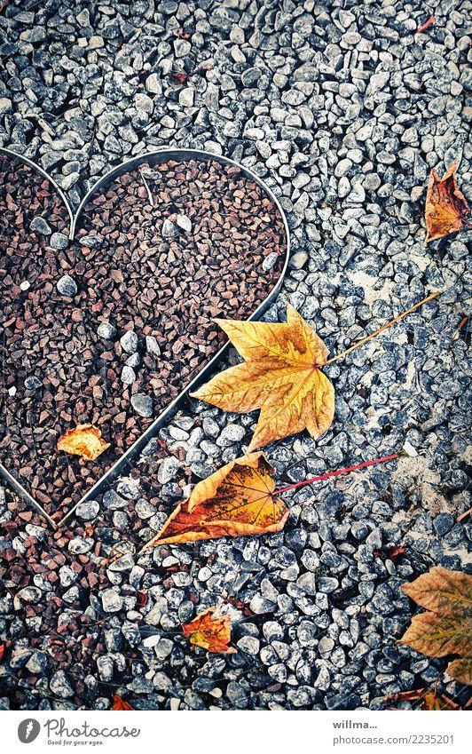 vom lieben und lassen ... Herbst Blatt Herbstlaub herbstlich Ahornblatt Herz grau Kieselsteine Farbfoto Außenaufnahme Menschenleer