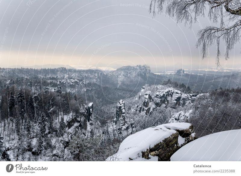 Verschneit Winterurlaub wandern Natur Landschaft Himmel Wolken Eis Frost Schnee Baum Birke Fichte Tanne Berge u. Gebirge Schlucht Naturschutzgebiet beobachten