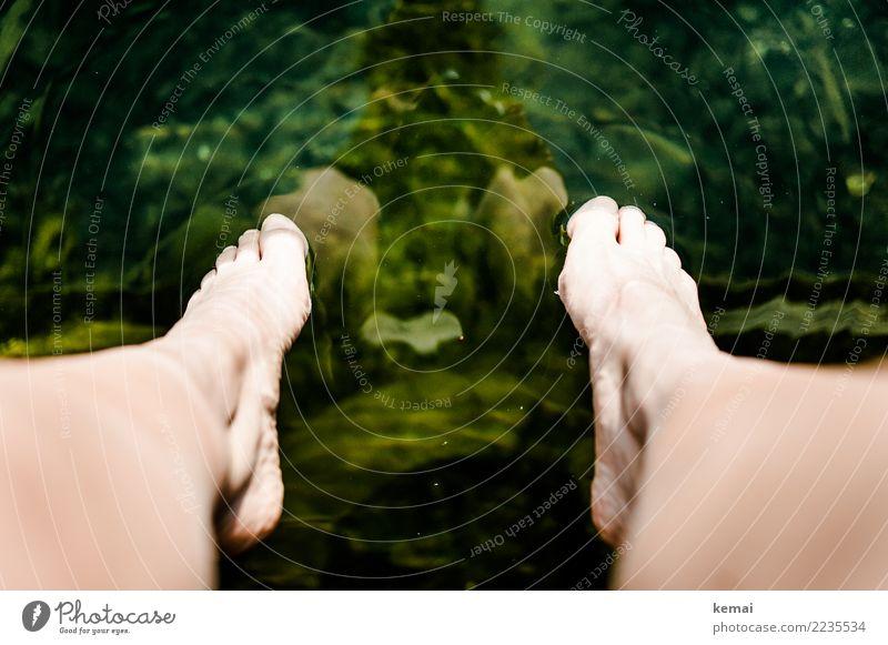 Sommerfüße am See Mensch Natur Ferien & Urlaub & Reisen grün Wasser Erholung ruhig Wärme Lifestyle Fuß Freiheit Ausflug Freizeit & Hobby Zufriedenheit