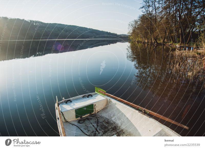 Morgen am See Natur Ferien & Urlaub & Reisen schön Wasser Landschaft Erholung ruhig Ferne Lifestyle Herbst Freiheit Ausflug Freizeit & Hobby Zufriedenheit