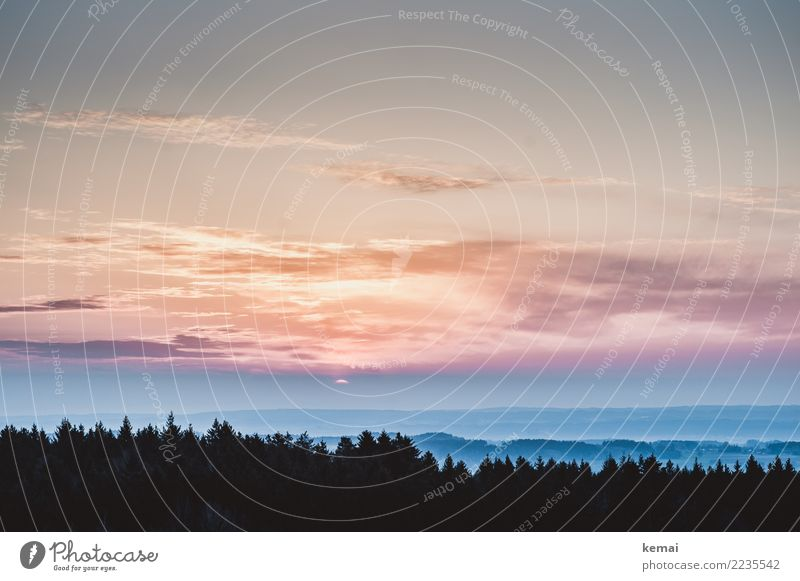 Sonnenaufgang harmonisch Wohlgefühl Zufriedenheit Sinnesorgane Erholung ruhig Freizeit & Hobby Abenteuer Ferne Freiheit Natur Landschaft Tier Himmel Wolken