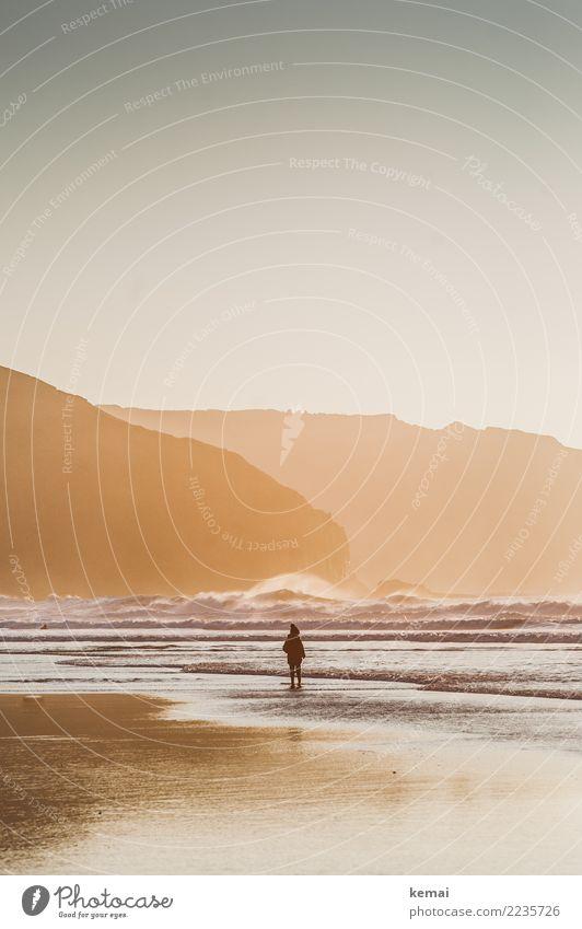 Wunderwelt Strand Kind Natur Ferien & Urlaub & Reisen Wasser Meer Erholung ruhig Winter Ferne Wärme Leben Küste Spielen Freiheit Ausflug