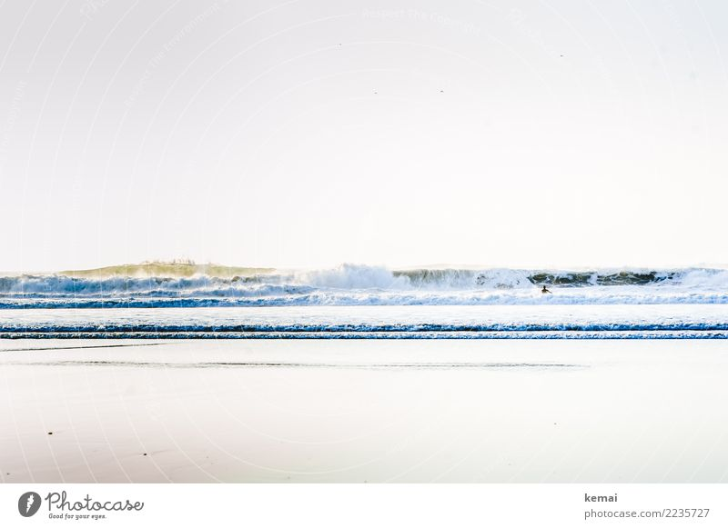 Good surf Mensch Natur Ferien & Urlaub & Reisen schön Wasser Meer Ferne Strand Leben Umwelt Küste Spielen Freiheit Schwimmen & Baden Ausflug Freizeit & Hobby